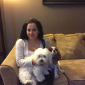 Dog Sitting in a Family Home dog boarding & pet sitting
