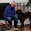 Pampered Pooch Palace dog boarding & pet sitting
