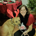 Shannon's Doggie Stay dog boarding & pet sitting
