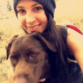 Alisha's Dog Boarding dog boarding & pet sitting