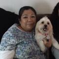 Flor's Doggy Daycare dog boarding & pet sitting