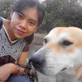 Tassy's Happy Doggie Day Care dog boarding & pet sitting