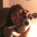Joanne's Brookdale pet vacations dog boarding & pet sitting