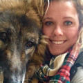 Danielle's Doggy Daycare dog boarding & pet sitting