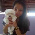 Natasha's puppy care dog boarding & pet sitting