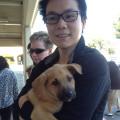 Doggy Paradise! dog boarding & pet sitting