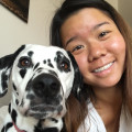 PhD student & experienced dogsitter dog boarding & pet sitting
