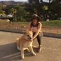 Patricia In the heart of Echo Park dog boarding & pet sitting