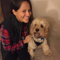 Erica's Redondo Oceanfront Vacay dog boarding & pet sitting