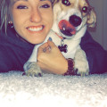 Abigale's Dog Services Lakewood dog boarding & pet sitting