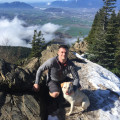 Matt's Port Coquitlam Dog Sitting dog boarding & pet sitting