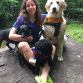 Rachel and Shellie's pet care dog boarding & pet sitting