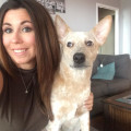 Julie in Fort Lee Loves Dogs dog boarding & pet sitting