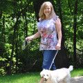 DogOn dog boarding & pet sitting