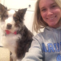 Polly Ann Trail dog boarding & pet sitting