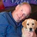Harlan's Dog Care dog boarding & pet sitting