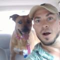 Highlands Mike dog boarding & pet sitting