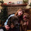 Emily's Northside Dog Boarding dog boarding & pet sitting