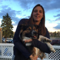 Klaudia's Pet Sitting Services dog boarding & pet sitting