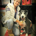 Happy paws Doggie services dog boarding & pet sitting