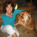 Ultimate Loving & Caring Pet Sitter dog boarding & pet sitting