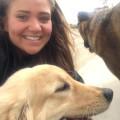 Anne's Gladstone Pet Resort dog boarding & pet sitting