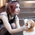 Riley South Philadelphia dog boarding & pet sitting