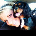 Pet Sitting - West Chester/Mason dog boarding & pet sitting