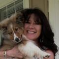 Country Cuts Farm* Doggie Heaven! dog boarding & pet sitting