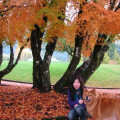 Eve (RVT) in North Van dog boarding & pet sitting