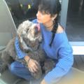 Happy Home dog boarding & pet sitting