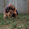 Love to Love Animals! dog boarding & pet sitting