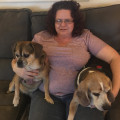 Ann's Home Away From Home Pet Care dog boarding & pet sitting