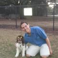 Prestige petcare dog boarding & pet sitting