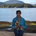 Love and Comfort in Wine Country dog boarding & pet sitting