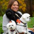 Dana's Doggie Hotel dog boarding & pet sitting