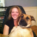 K9 Paradise in Braintree dog boarding & pet sitting