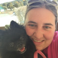 Paw-tastic Paradise! dog boarding & pet sitting