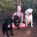 Active Livin with a Lab Pack dog boarding & pet sitting