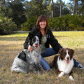 Heather's Dog Haven dog boarding & pet sitting