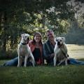Furry Friends Fun House dog boarding & pet sitting