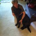 gooddogmom dog boarding & pet sitting