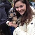 Pup's Place on Palatine! dog boarding & pet sitting