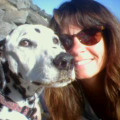 Santa Cruz Mountain Doggie Retreat dog boarding & pet sitting