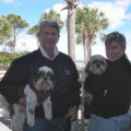 Two Smiling Shih Tzus, Hilton Head dog boarding & pet sitting