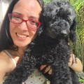 Karina Kares Sitter Services dog boarding & pet sitting