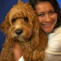 Happy, Healthy Doggy Haven! dog boarding & pet sitting