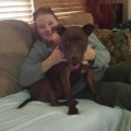 Pets are my Passion-Airport Area dog boarding & pet sitting