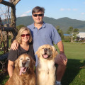 Fox Run Dogs In-Home Boarding dog boarding & pet sitting