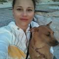 Pack 'n' Play dog boarding & pet sitting